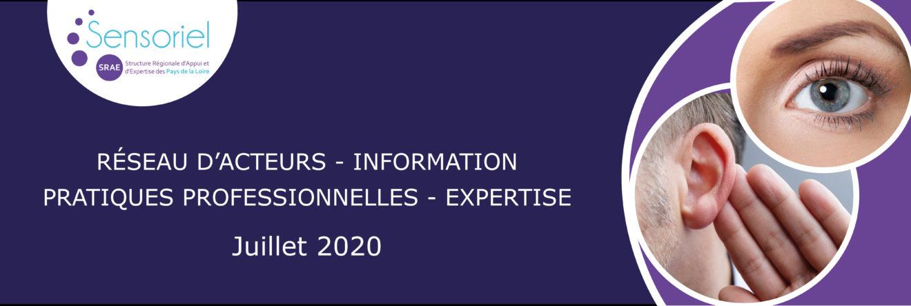 Bannière de présentation SRAE Sensoriel Juillet 2020