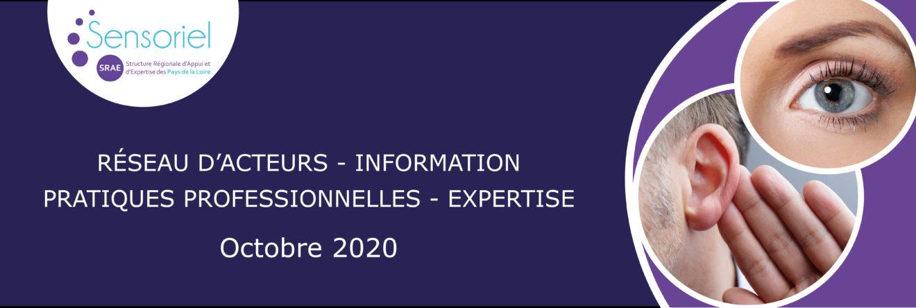 Bannière de présentation SRAE Sensoriel Octobre 2020