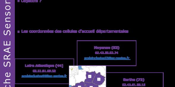 Cellule Aide handicap école - 09-2019