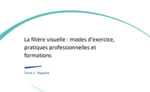 La filière visuelle : modes d'exercice, pratiques professionnelles et formations - Tome 1
